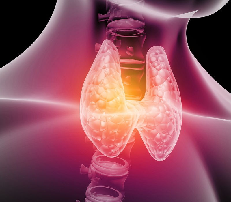 Cambios de la tiroides en el embarazo y sus riesgos