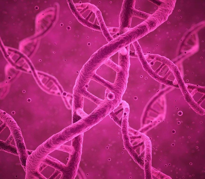 Filamento ADN en genética