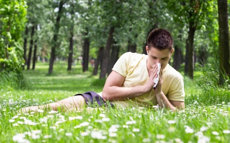 La primavera y la alergia al polen